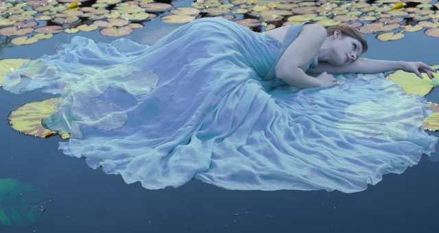 lily-pad-water-2